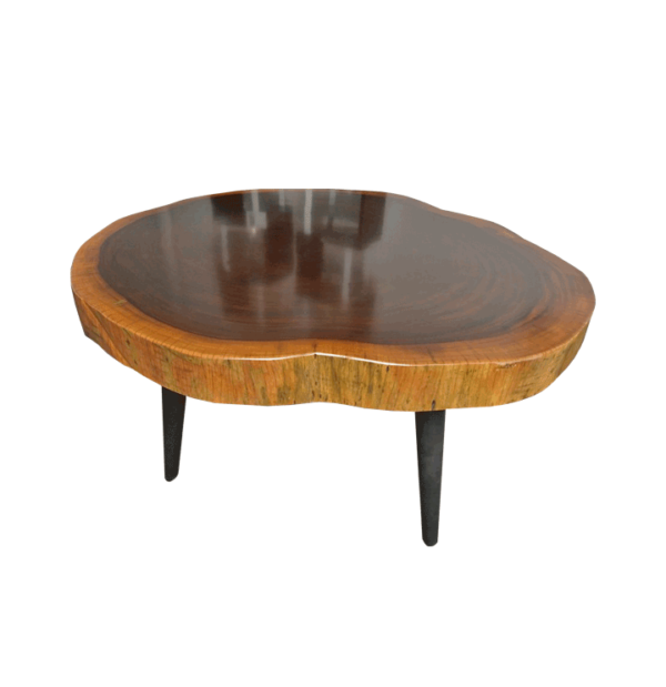 Robin Tree Trunk Table 58622071